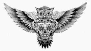 Immagine per tatuaggio di teschio messicano con gufo