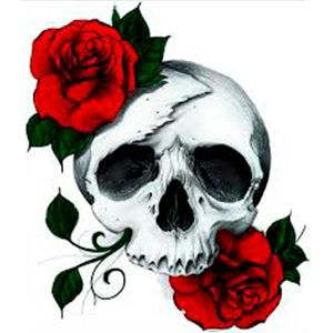 teschio bianco con due rose rosse